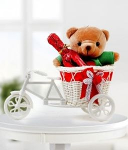 Teddy in Bicycle