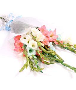 12 Mix Gladiolus