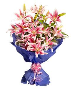 10 Pink Oriental Lilies Bunch
