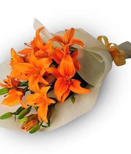 5 Orange Lilies Bunch