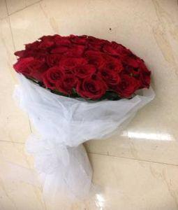 50 Roses in White Net