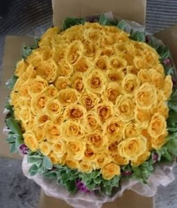 100 yellow roses bunch