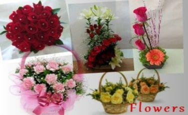 Flowers in Delhi