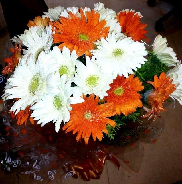 Gerbera Flowers Bunch