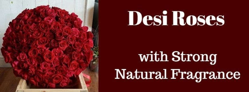 Desi Roses Bunch