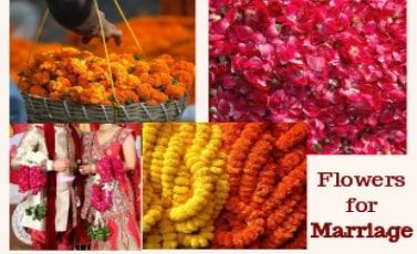 Flowers for Marriage delivery Delhi NCR