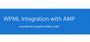 Download WPML For AMP