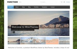 Download Woothemes Function WooCommerce Themes