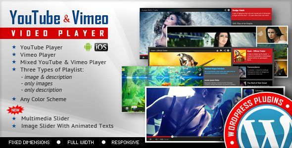 Download Youtube Vimeo Video Player and Slider WP Plugin