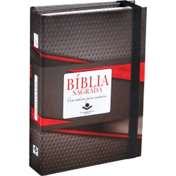 Bíblia Sagrada Com Caderno Para Anotações (Cinza e Vermelho)