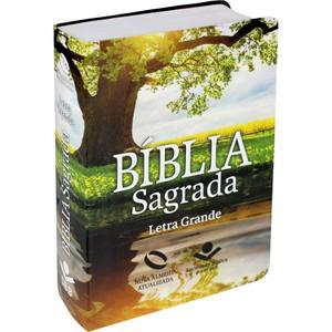 Bíblia Sagrada - NA (Capa Reflexo) Letra Grande