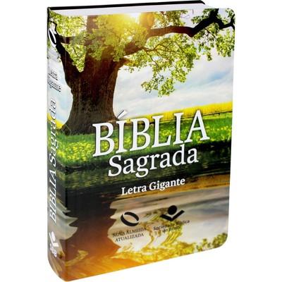 Bíblia Sagrada - NA (Capa Reflexo) Letra Gigante