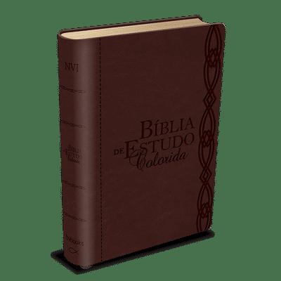 Bíblia de Estudo Colorida - Vinho
