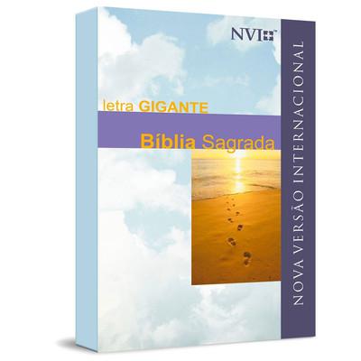 Bíblia Sagrada NVI Letra Gigante (Brochura)