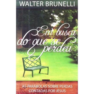 Em Busca do Que se Perdeu - Walter Brunelli