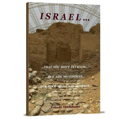 Israel Que Você Ainda Não Conhece - Yehuda Hochmann