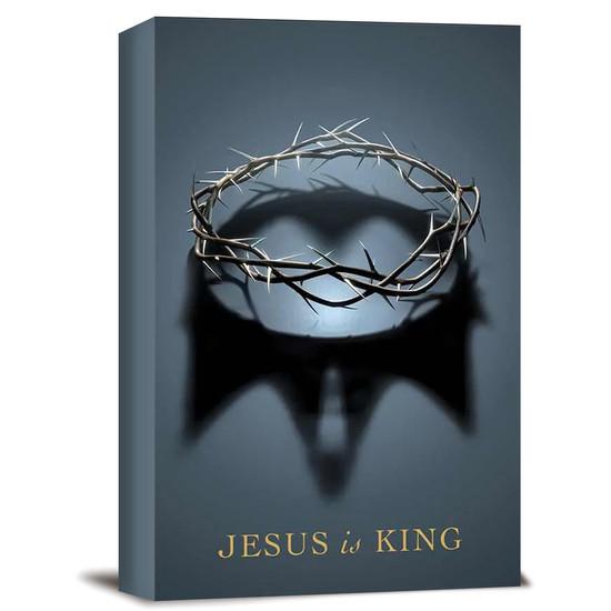Bíblia NAA Jesus is King