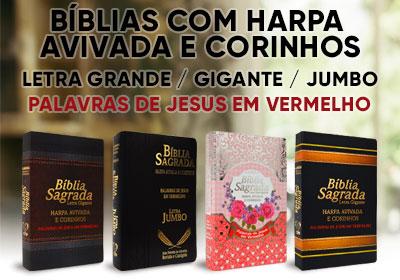 Combo Estudos Bíblicos em Esquema