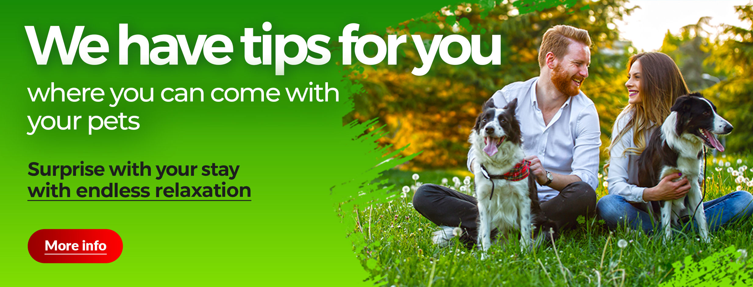 We have a tip where you can come with your pets