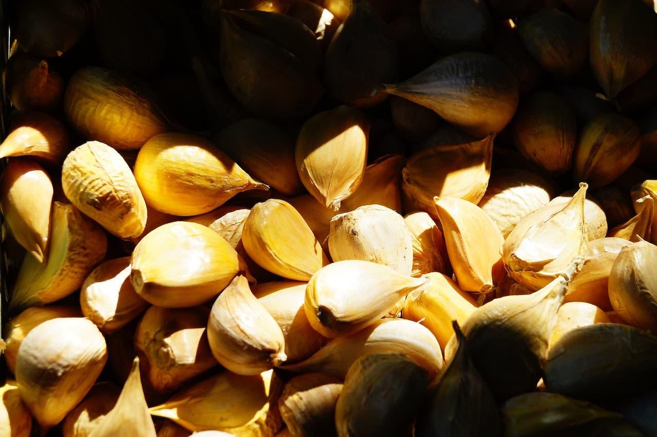 Speccie di aglione della Valdichiana