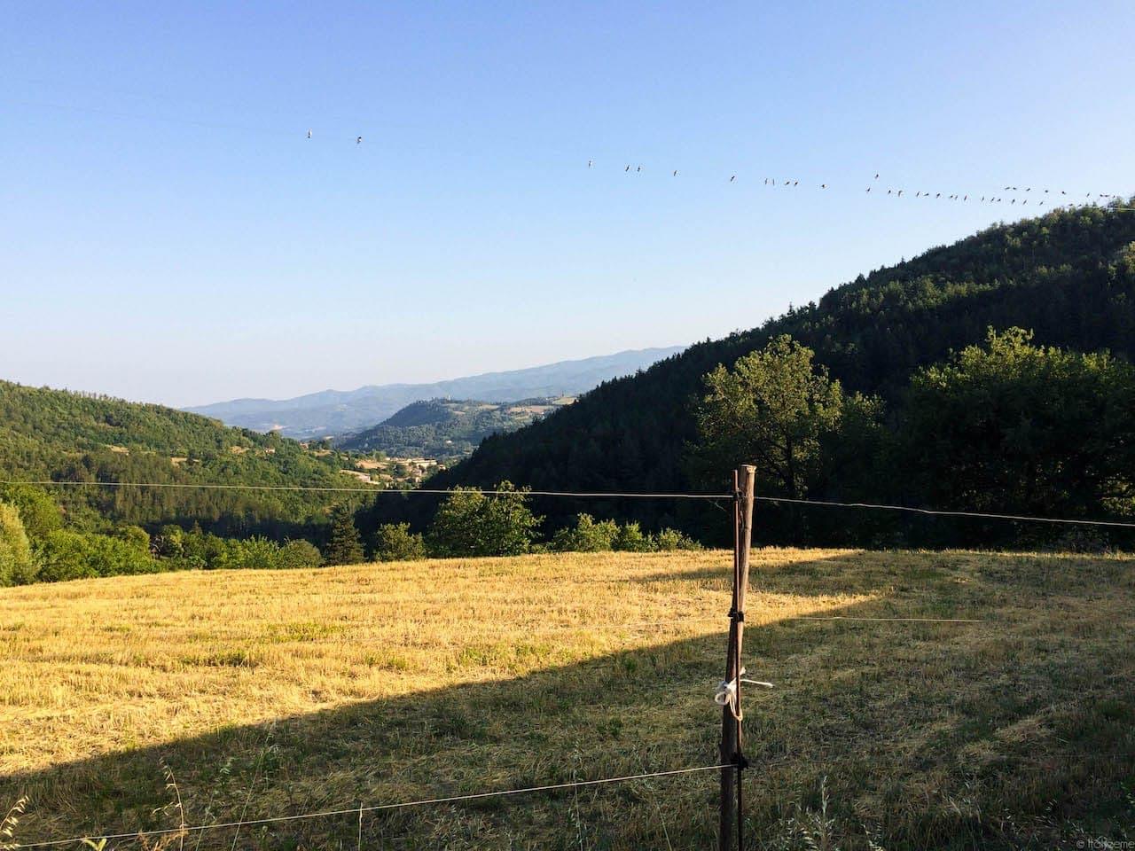 La vallata casentinese vista da Papiano