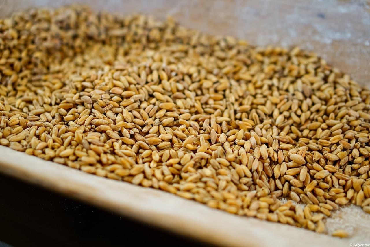 Chicchi di grano, Mulino Valdorcia