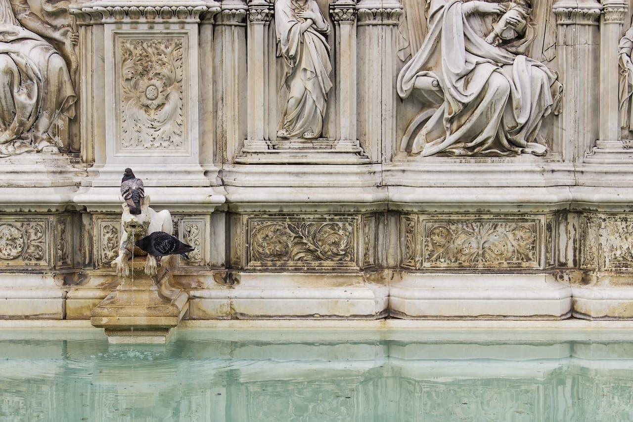 L'acqua della Fonte Gaia in Piazza del Campo