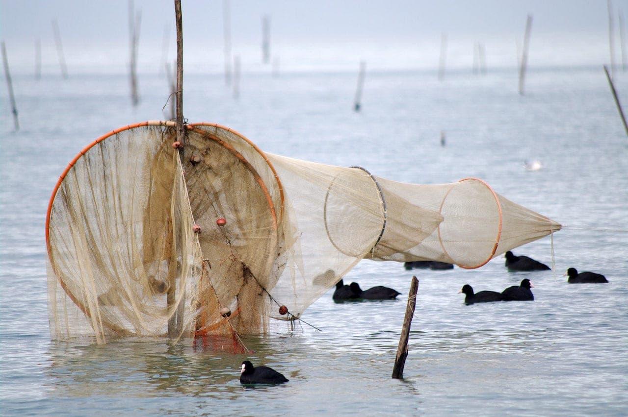 Reti da pesca al lago Trasimeno
