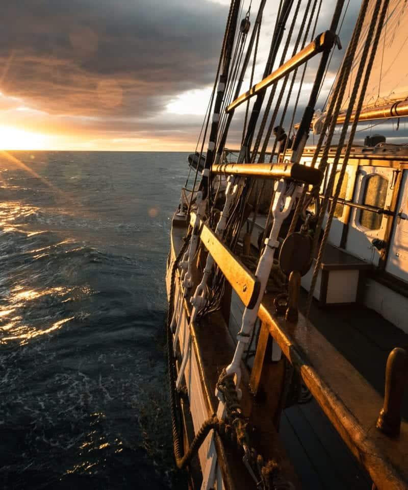 sailing tours from reykjavik