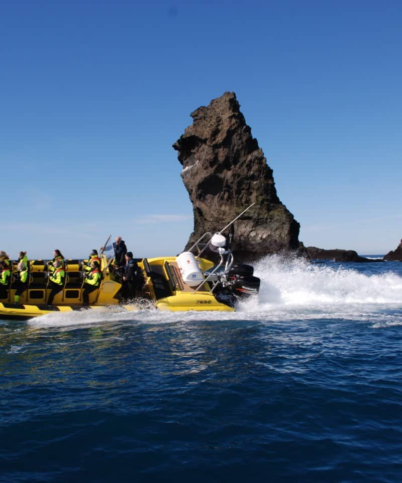 vestman islands rib safari