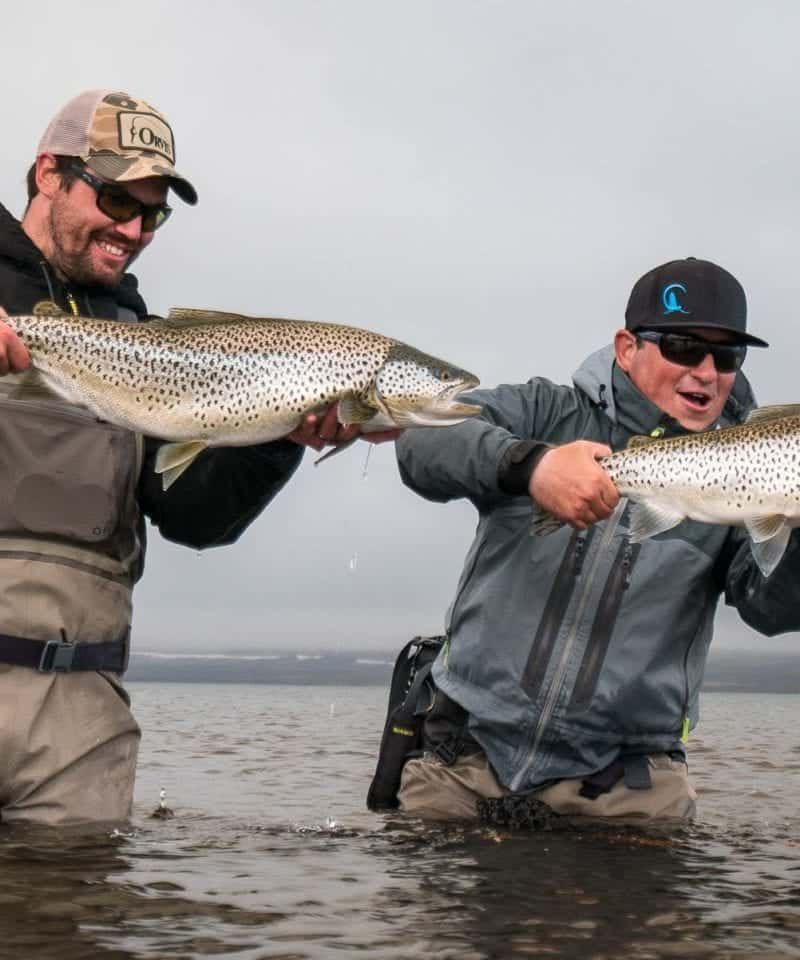 trout fishing iceland