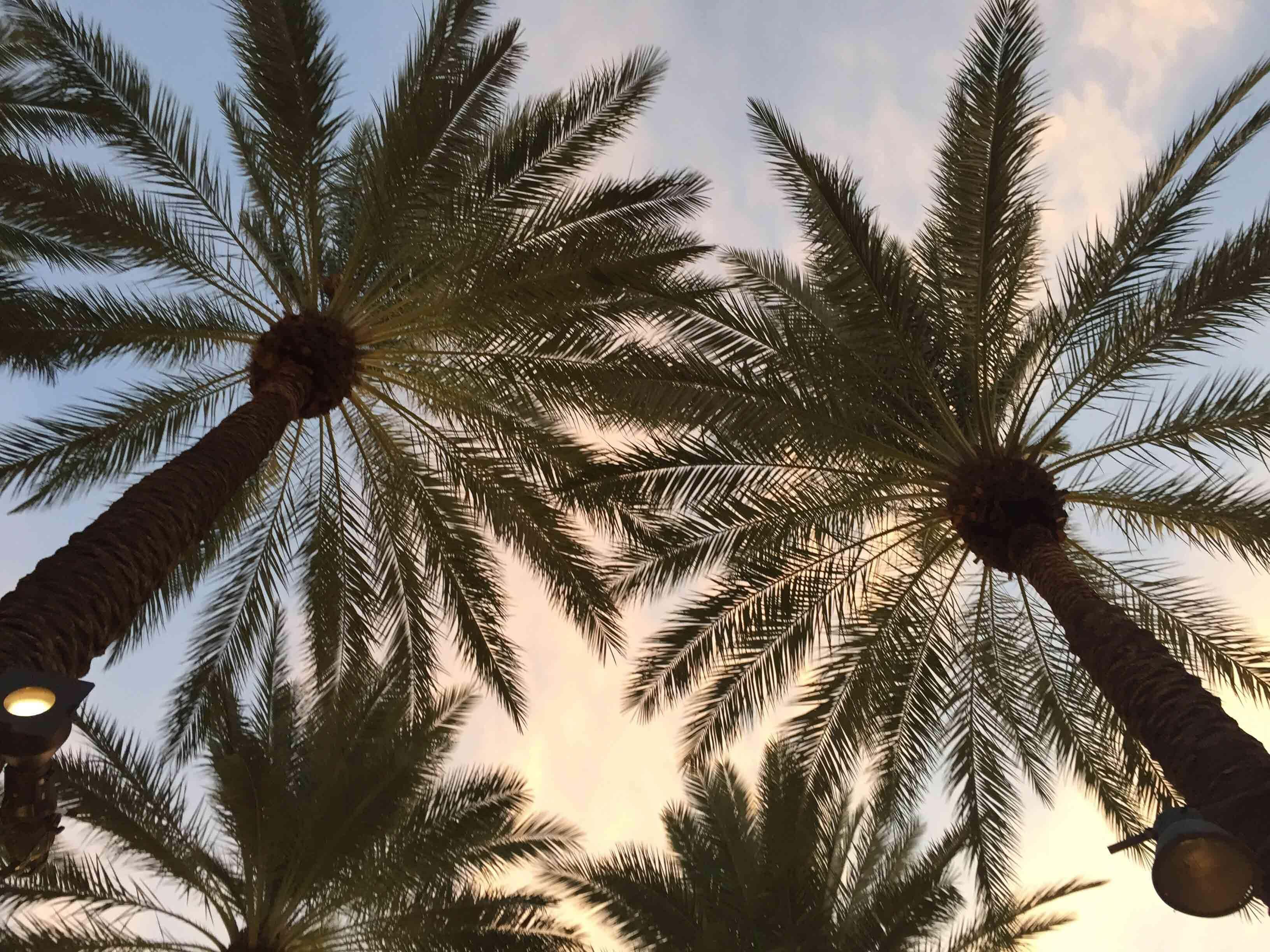 aquadryAZ-West-Valley-Phoenix