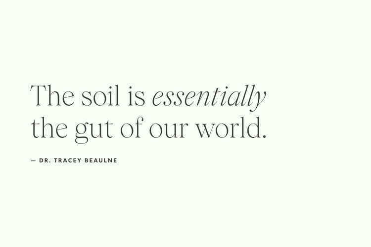 Microbiome quote