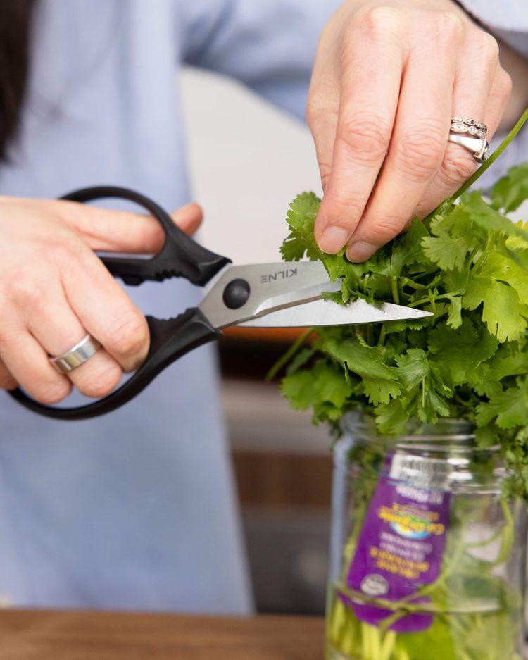 Cutting herbs.