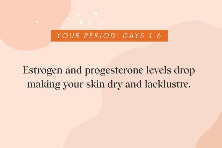 Estrogen and progesterone levels drop.