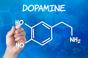 21 Day Dopamine Detox Plan with Free Journal Prompts