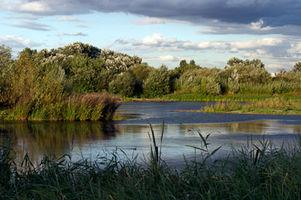File:Wetland Centre Lagoon.jpg