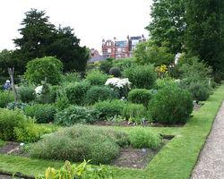 File:Chelsea physic garden.jpg