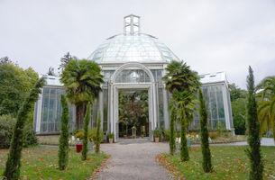 File:Geneva Botanical Garden 2.jpg