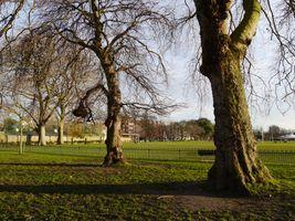 File:Hurlingham Park, London 06.JPG