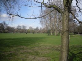 File:Ravenscourt Park - view north - geograph.org.uk - 1231566.jpg