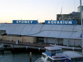 File:Sydney Aquarium.jpg