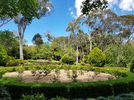 File:2019-11-10 EG Waterhouse National Camellia Gardens 1.jpg