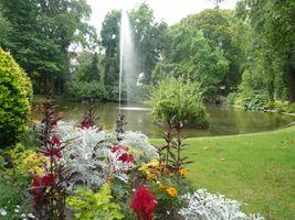 File:P1040794 Jardin des plantes Nantes.JPG