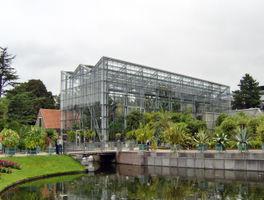 File:Hortus Botanicus Leiden - De Wintertuin.JPG