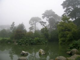 File:San Francisco Botanical Garden.jpg