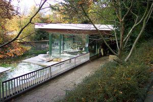 File:Wuppertal Zoo 0054.jpg