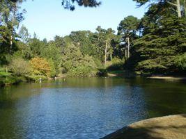 File:Golden Gate Park 03.JPG