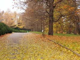 File:Grishko botanical garden-2.JPG