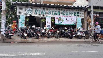 VIVA STAR COFFEE CÂY TRÂM